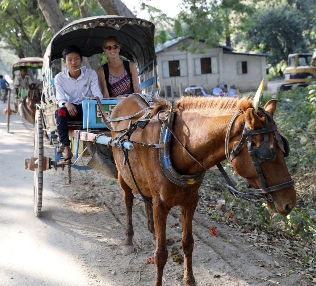 Horse buggy, Innwa