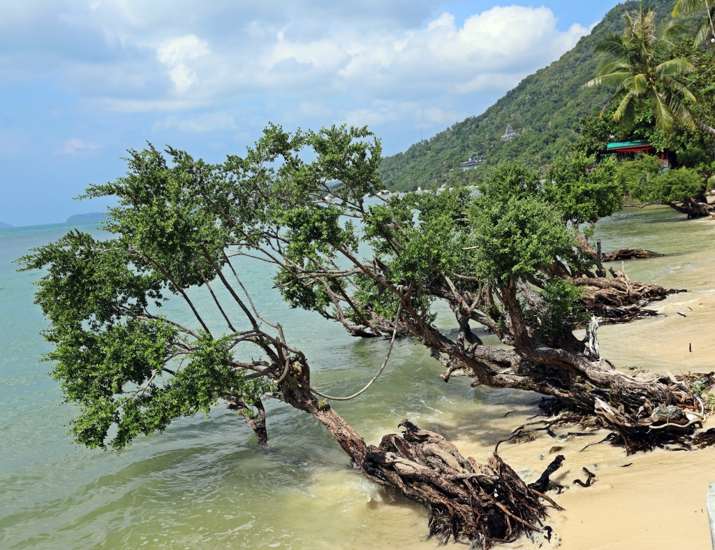 Leela Beach, Koh Phangan