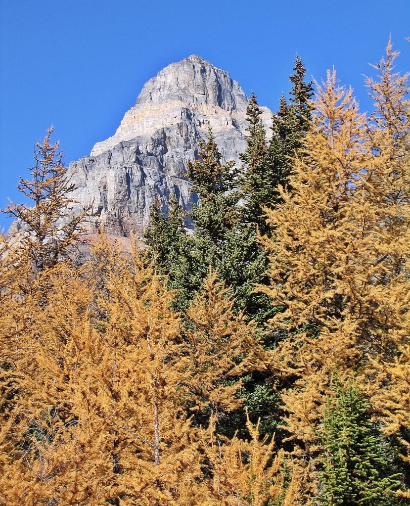Paradise Valley, Banff Natinal Park