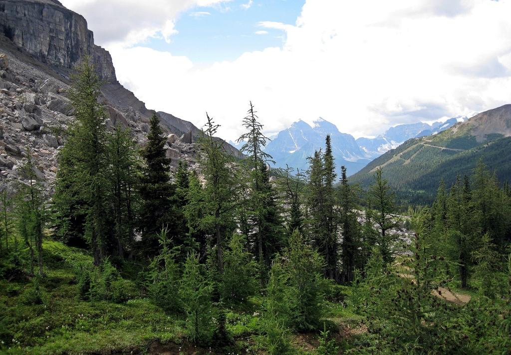 Boulder Pass, Banff National Park