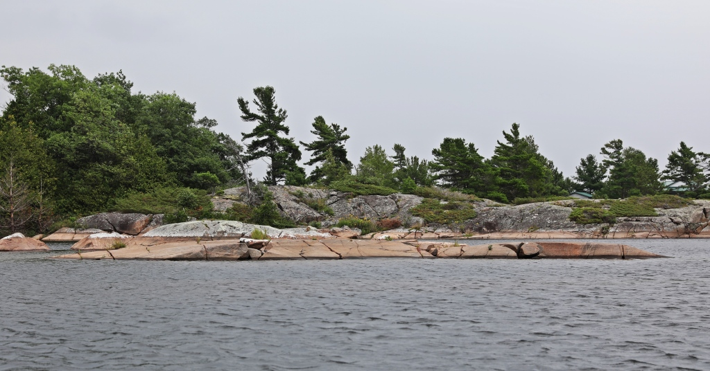 Trees bent from prevailing winds, Georgian Bay, Ontario
